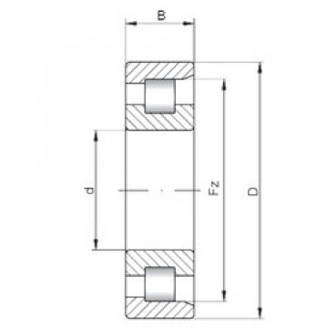 ISO NF2924 cylindrical roller bearings