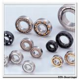 NTN 6020ZZNR deep groove ball bearings