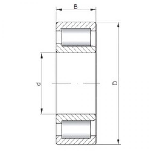 ISO NJF2311 V cylindrical roller bearings #2 image
